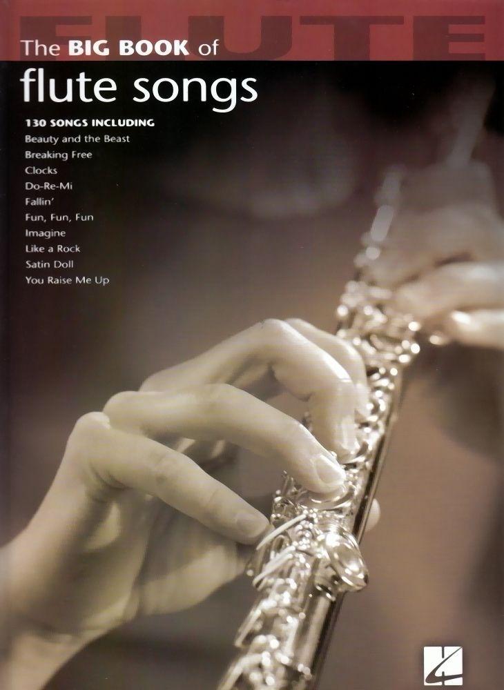 Noten THE BIG BOOK OF FLUTE SONGS HL 842207 Querflöte