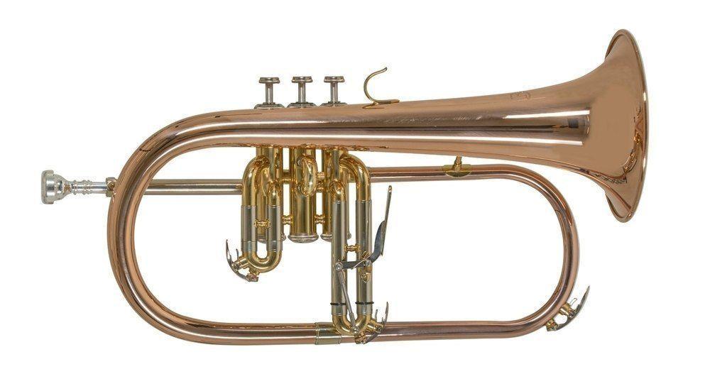 Bach FH501 B-Flügelhorn Goldmessing, Bohrung 11,00mm, Etui + Zubehör