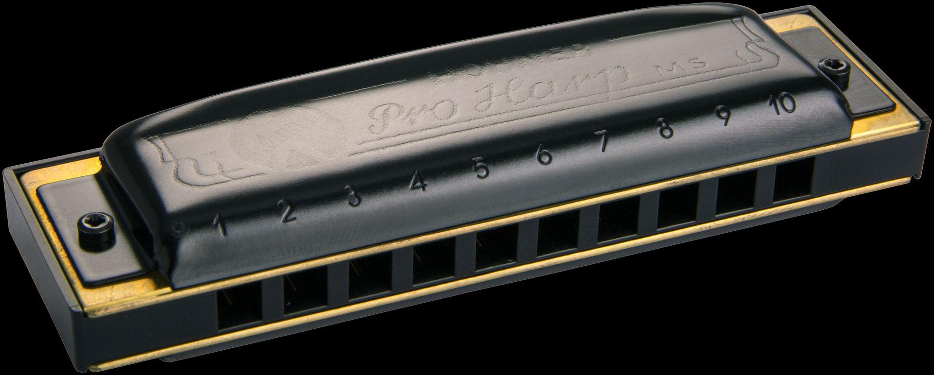 Hohner Pro Harp A-Dur /20 Mundharmonika HOM564106