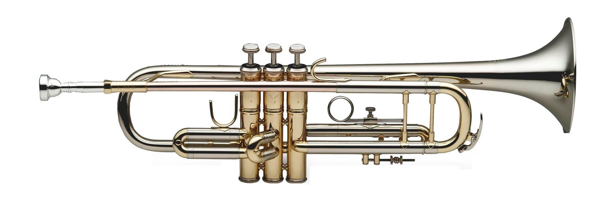 SWING TR-202-NS B-Trompete  Neusilber Schallbecher lackiert, Bohrung 11,66mm