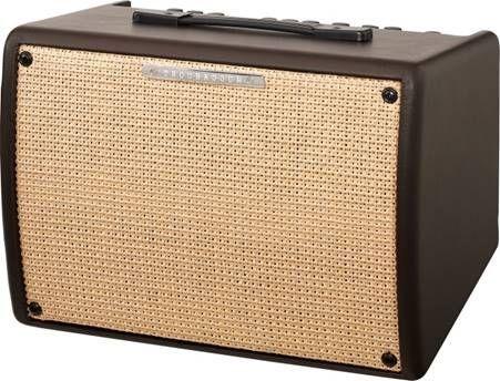 Ibanez Troubadour T30II Akustik Verstärker
