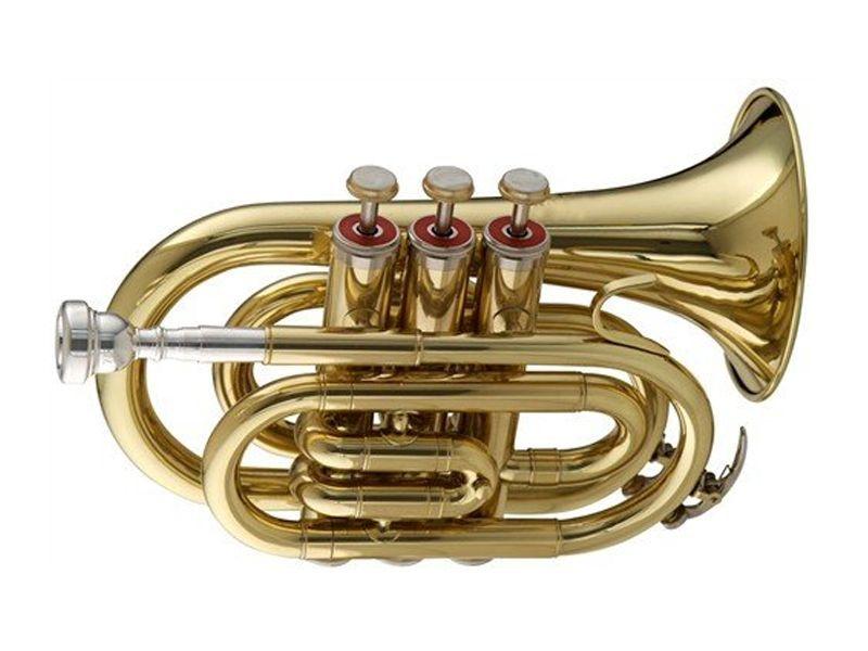 SWING TT-201 B-Taschentrompete lackiert, Bohr.11,70 mm, Etui u. Zubehör